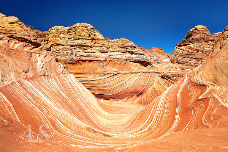 Classic photo of The Wave in Arizona Coyote Buttes North
